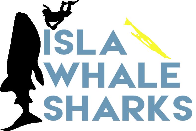 Isla Whale Sharks